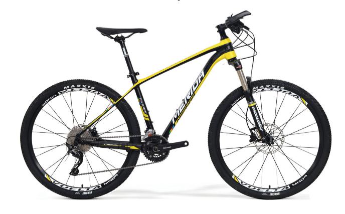 Xe đạp địa hình Challenger 700