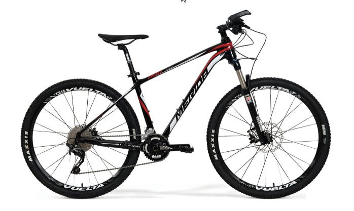 Xe đạp địa hình Challenger 800
