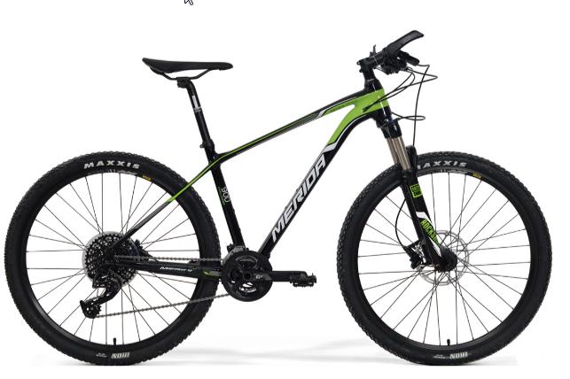 Xe đạp địa hình Challenger 900